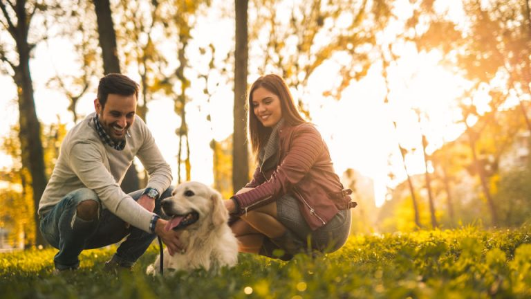 Couple playing with their dog in the park.
